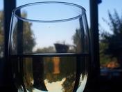 Abstract Garden and jug seen 3 times through a glass