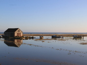 Early morning at Thornham Harbour