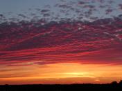 Vibrant: Marsh Sky