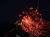 fireworks on slow shutter