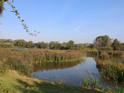 Iwitters visit Lackford Lakes on Sunday the 24th September