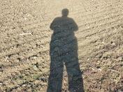 Autumn - long shadows on the autumn plough