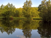 The Mirror lake......