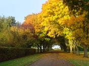 Seasons.  Autumn.