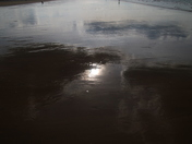 Abstract: Wet Sand