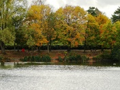 Autumn at Needham Lakes.