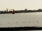 IW24 day at Shotley