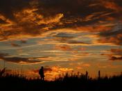 Man watching Sun set over Oulton marshes tonight 13/ 10/17