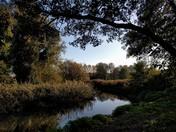 River at Ringland