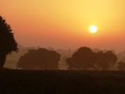 Rising sun over Clopton Green farm.