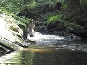 Watersmeet lynton