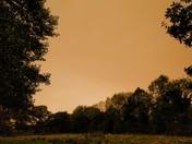 Eerie yellow sky