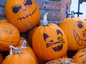 ORANGE. Pumpkin Time