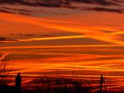 ORANGE. Sunrise