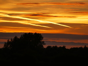 ORANGE. Sunset