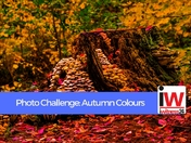 PHOTO CHALLENGE: Autumn Colours