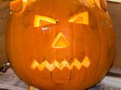 Pumpkin Cat!