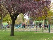 Autumn scene in Valentine park Ilford