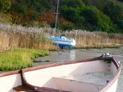 Gone ashshore