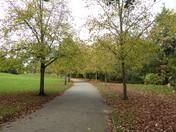 Autumn Colours in Christchurch Park