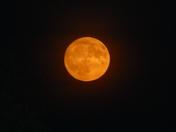 Orange Moon 5.15pm tonight