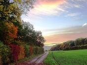 Autumns changing colours.