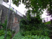 AN OLD CASTLE SURROUNDED BY NEW GREENERY