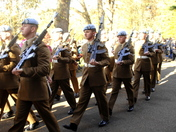 Remembrance day at christchurch park ipswich