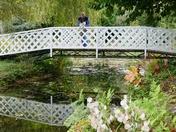 Bridges.(photo challenge)