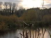 Playford Suffolk