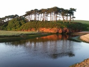Reflections at Budleigh
