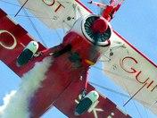 THE GUINOT WINGWALKERS