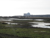 View over West Scrape towards Sizewell B