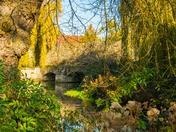 Vibrant - Abbey Gardens, Bury St Edmunds