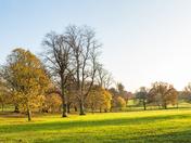 Vibrant - Christchurch Park