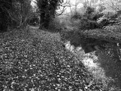 Fakenham Riverside Walk