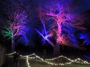 Blickling at Christmas