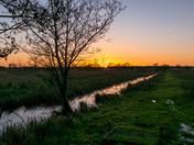 Strumpshaw fen Sunset