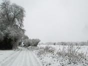 Snowy Suffolk - Groton