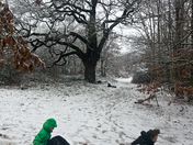 Claybury Park in the snow