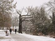 Snowtime in Raphaels park