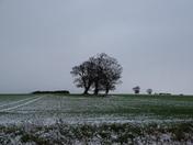 Photo challenge winter