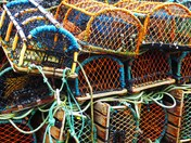 Crab fishing pots ready to use.