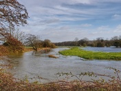 Flooded Marshes at Earsham
