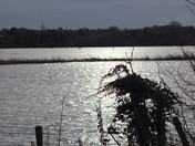 Flooding on the Marshes