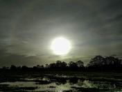 Solar halo