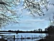 Flooding at Earsham