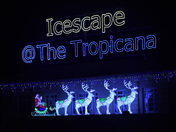 Icescape Santa Display