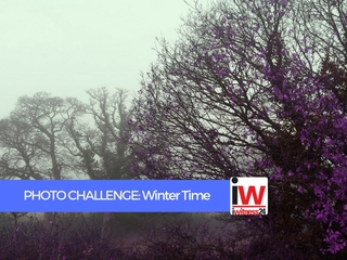 PHOTO CHALLENGE: Winter Time