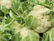 Cauli Close Up